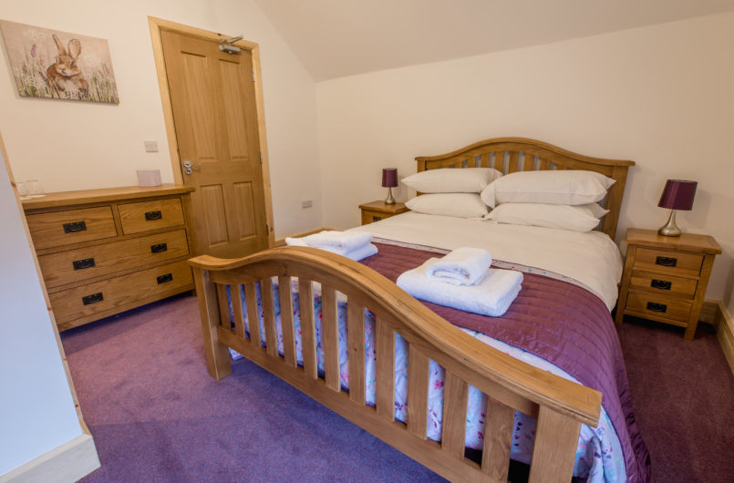 Caban Coch, King size room
